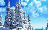 Погода в Екатеринбурге: неделя ожидается теплой и малоснежной